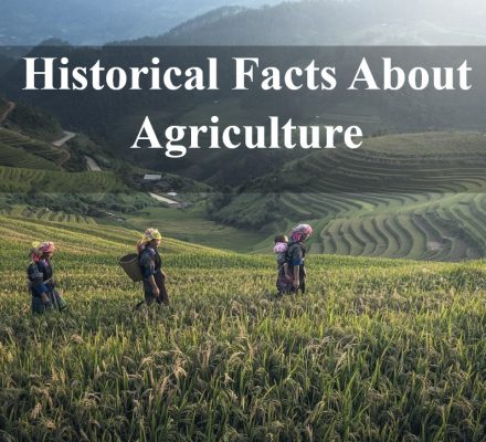 facts about agriculture