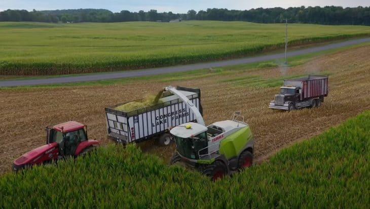 Corn Silage Harvesting