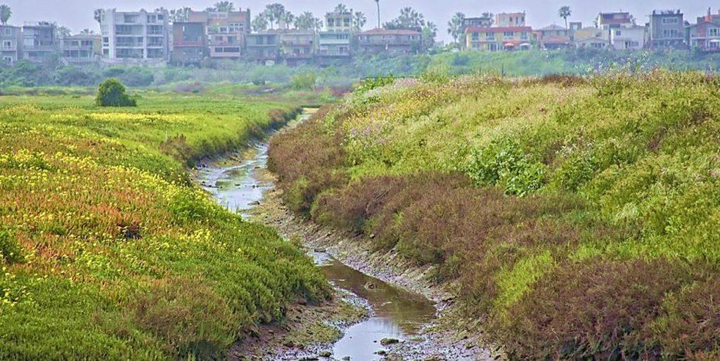 landscape managing practice