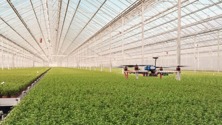Why Is Dutch Agriculture Critically Dependent Upon Technology