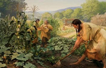 how did the introduction of agriculture affect early peoples