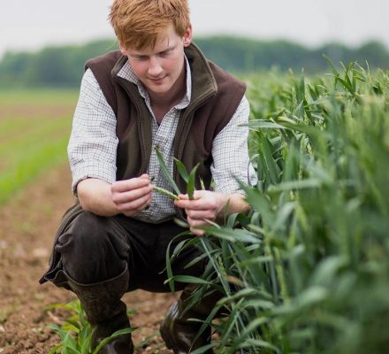 what can you do with an agriculture degree