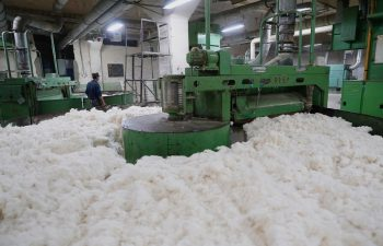 How Cotton is Processed