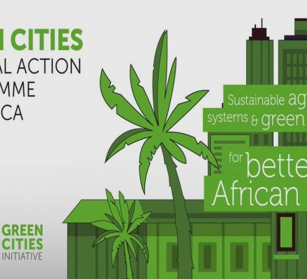 FAO Launches Green Cities Action Program For Africa