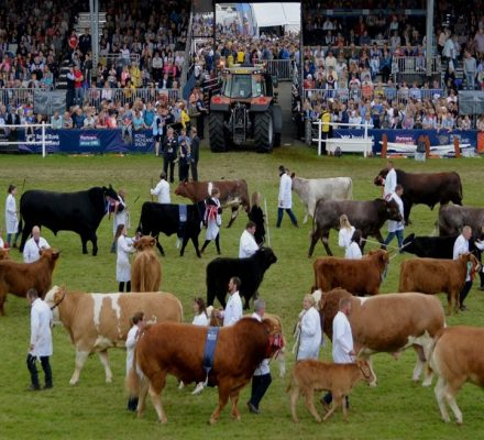Scottish Agricultural Show 2021 Judges Announced For Cattle And Goats