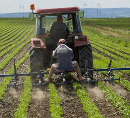 Study Shows Increased Rate Of Injuries Related To Agriculture
