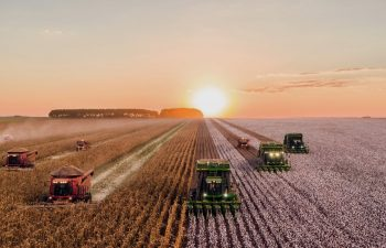 Agriculture Carbon Credits Different