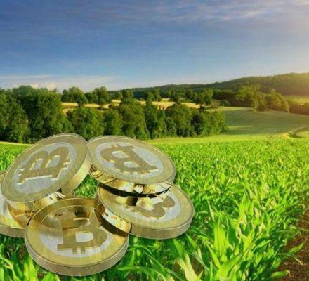Cryptocurrency Use Among Kenyan Farmers