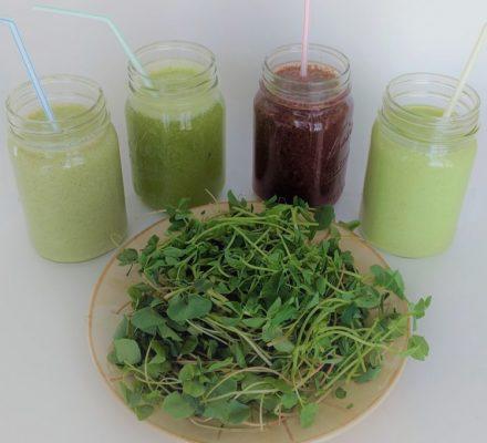 Microgreens Juice