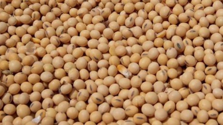 Grain Prices Soar Nearly 1% After USDA