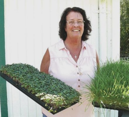 Grant Gardener Grows Microgreens For Business