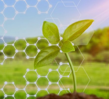 Management Of Pesticide Residues By Nanobiotechnology