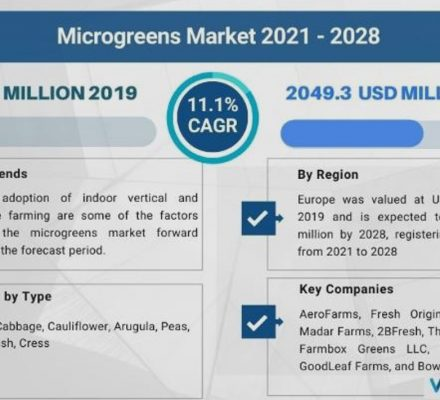 Market Size For Microgreens Is Estimated At USD 2,049.3 Million By 2028, Up 11.1% CAGR
