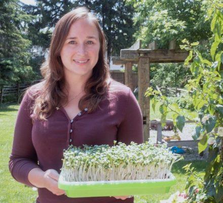 One Tray Microgreens Business