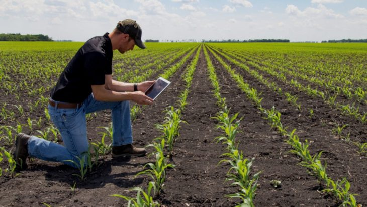 Sustainability Goals By Integrating Field Practices