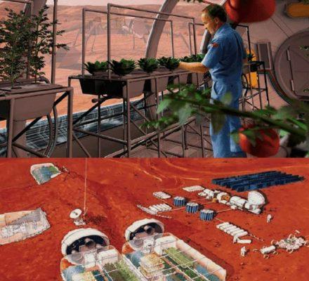 Terra-Mars Extra-Terrestrial Aquaponics Pioneer