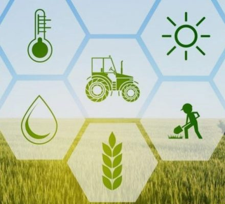 Blockchain Technology For Agriculture