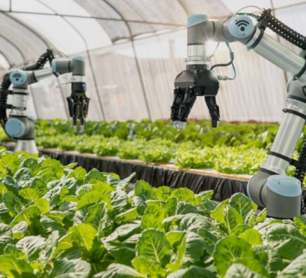 Ethical And Policy Issues Of Robots In Agriculture
