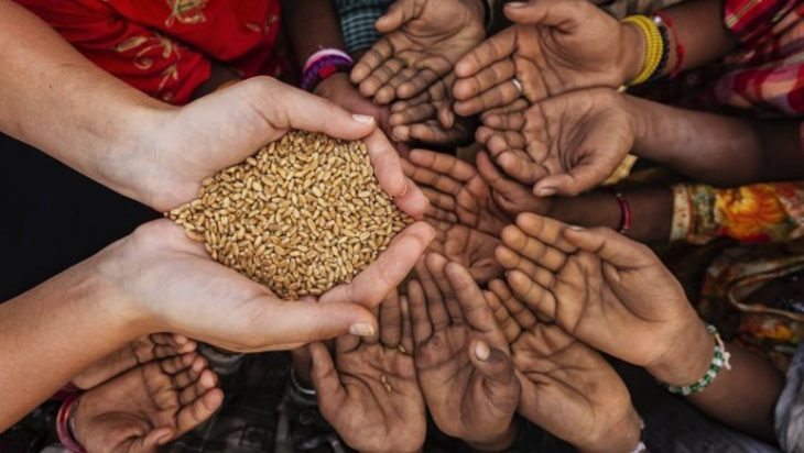 Pakistan Is Slated Food-Insecure Country