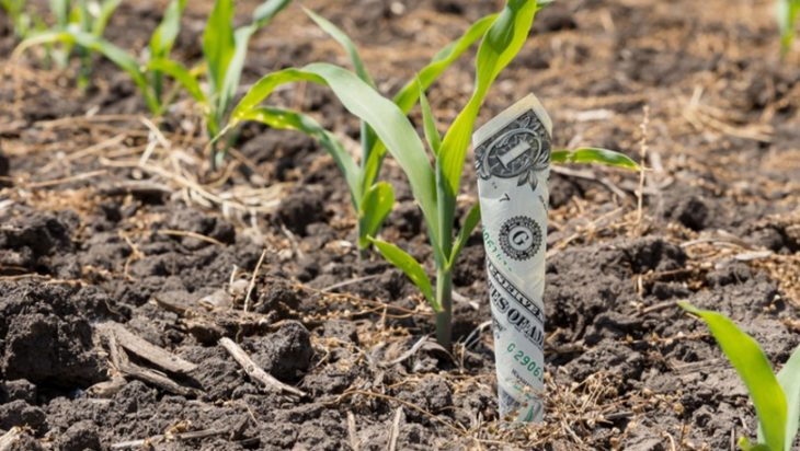 Agricultural Funding Largely Distorts Prices