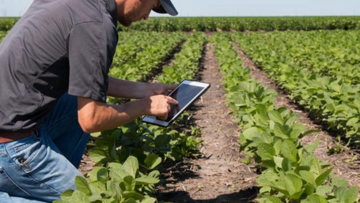 Cyber Attacks Are Targeting The Food And Agriculture Sectors