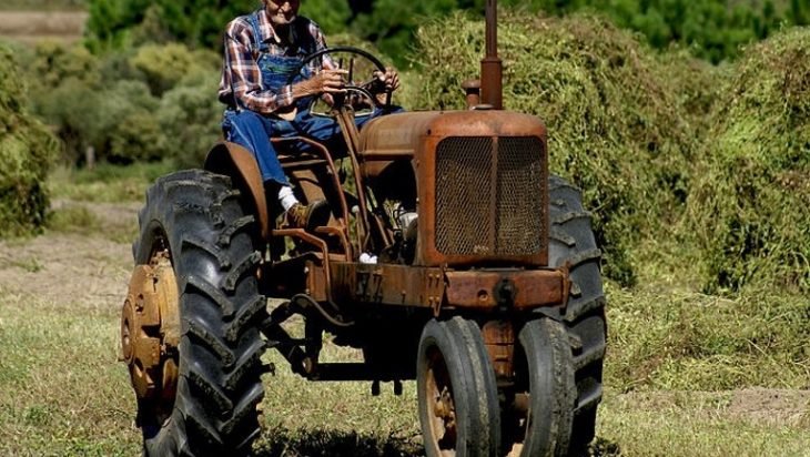 Old Farmers Day